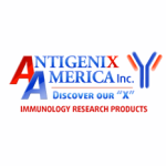 Antigenix America Inc.