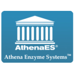 Athena Enzyme Systems