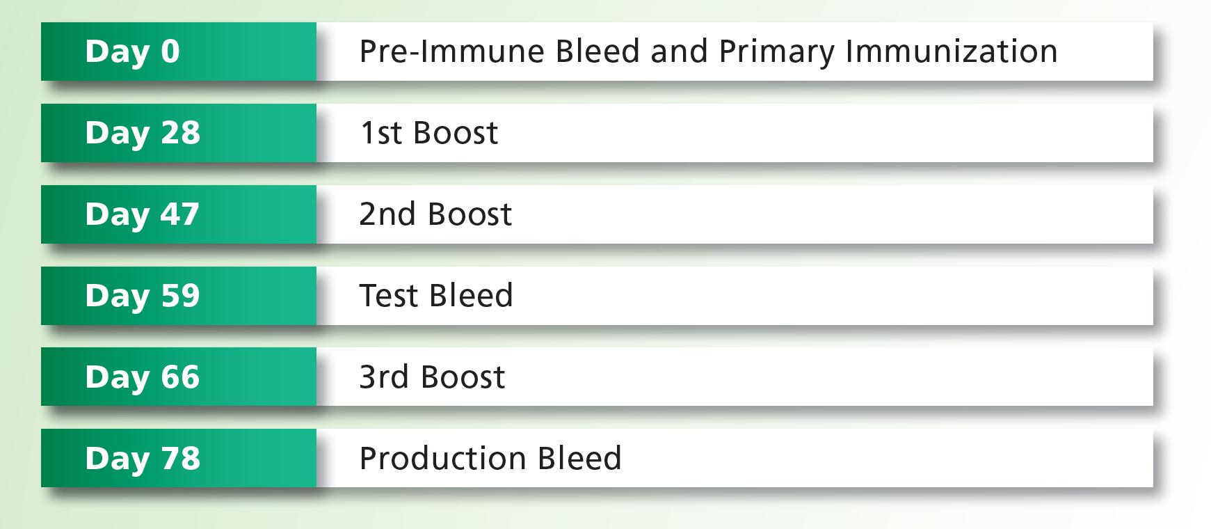Antibody Services