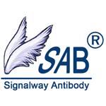 Signalway Antibody Co. Ltd.