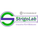 StrigoLab