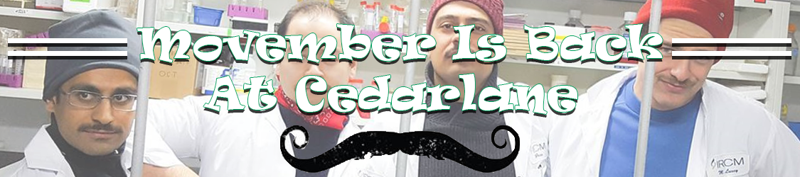Movember is back at Cedarlane