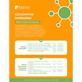 Rockland Coronavirus Antibodies Flyer