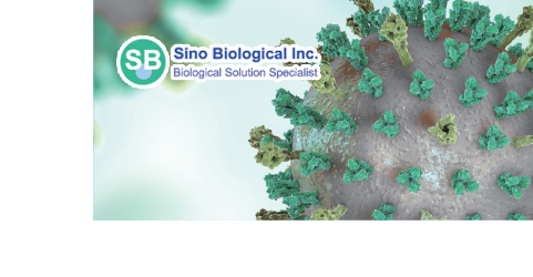 Sino Biological COVID-19 Webinar, May 2020