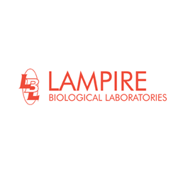 Lampire
