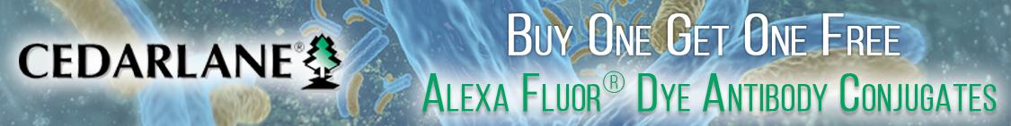 Save on Alexa Fluor Dye Antibody Conjugates