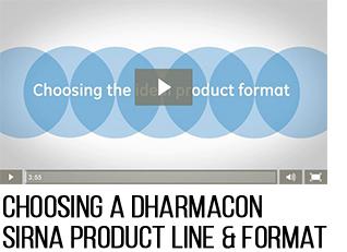 GE Dharmacon DharmaFECT Video