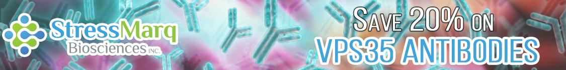 Save on StressMarq VPS35 Antibodies from Cedarlane