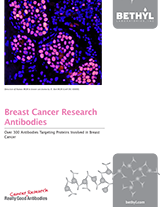 Bethyl Labs Breast Cancer Brochure