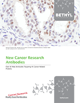 Bethyl Labs New Cancer Antibodies Brochure