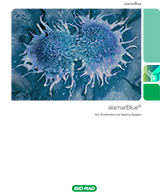 Bio-Rad alamarBlue Cell Proliferation and Viability Reagent Brochure