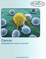 BioXCell Cancer Research Antibodies Brochure