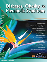 Biovision Diabetes Obesity and Metabolic Syndrome Brochure