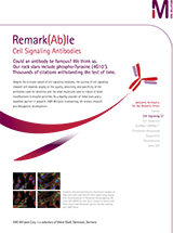 EMD Millipore Cell Signaling Antibodies Brochure