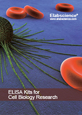 Elabscience ELISA Kits for Cell Biology Research Brochure