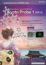 Goryo Chemical Kyoto Probe 1 Brochure