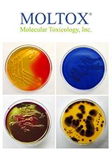 Moltox Bacterial Media Brochure