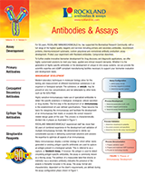 Rockland Antibodies and Assays Brochure