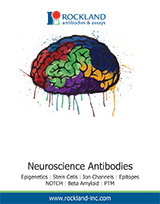 Rockland Neuroscience Brochure