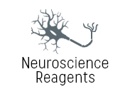 Neuroscience Reagents