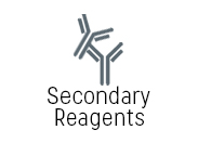 Secondary Reagents