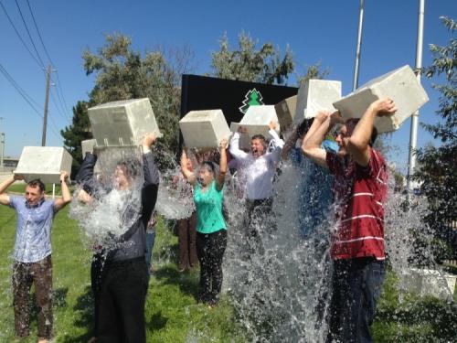 Cedarlane ALS Ice Bucket Challenge